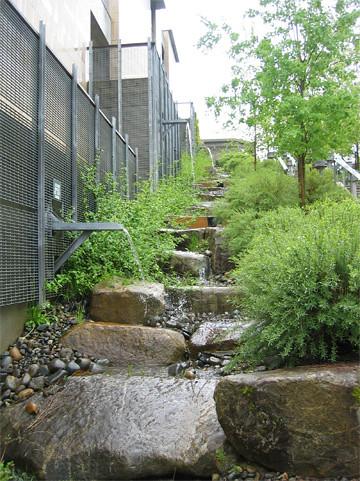 Natural Drainage System Nds In Action At Kitsap Admin Bu
