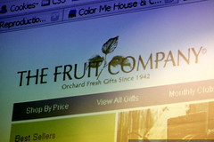 site: the fruit company   hot seat   panel seo criti…