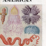 1953 may Scientific American