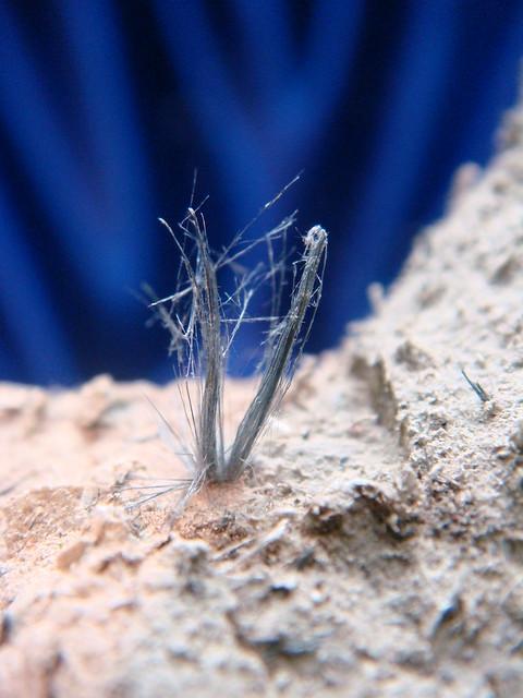 Crocidolite Fibers Detail in Asbestos Cement Pipe