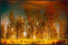 ...river of gold...!!!
