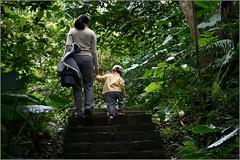 090303 富陽自然生態公園及福州山公園