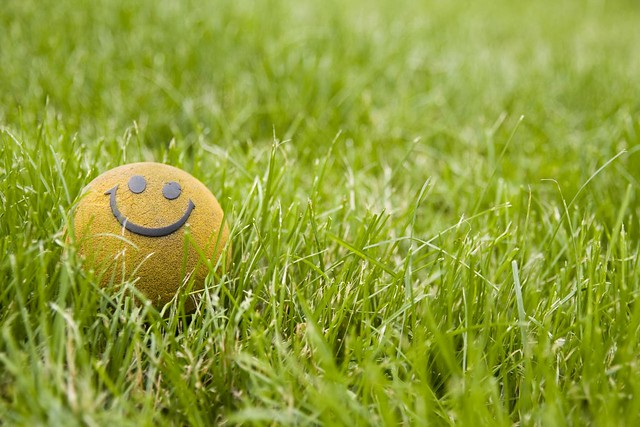 Happy ball in grass