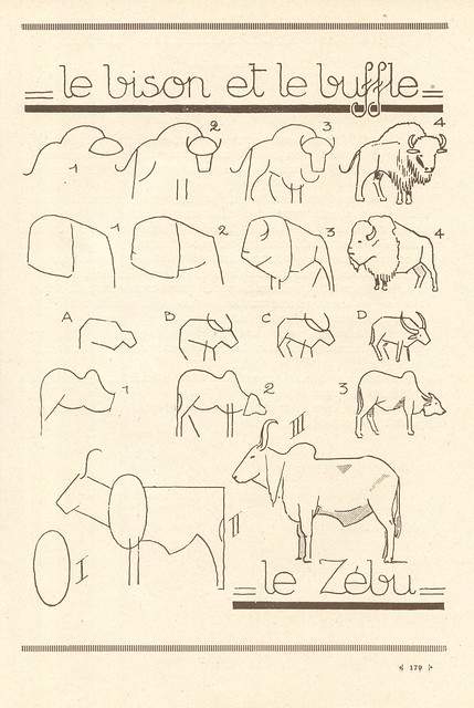 how to draw a buffalo video