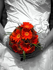 Wedding Selective Color