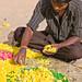 Small photo of Flower Arranger