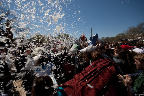 DC Pillow Fight