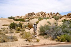 Joshua Tree National Park, 2009 - 082