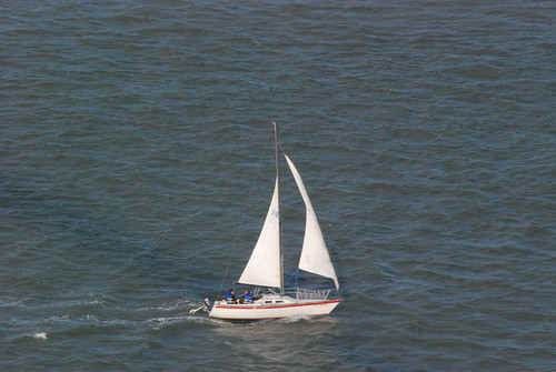 Sail Away on the Bay