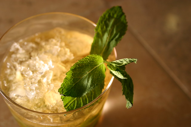 Powerful Natural Health Benefits of Mint