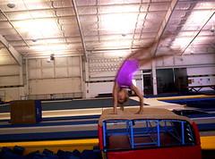 balance beam(0.0), floor gymnastics(0.0), trampoline(0.0), rings(0.0), individual sports(1.0), sports(1.0), gymnastics(1.0), artistic gymnastics(1.0), trampolining(1.0),
