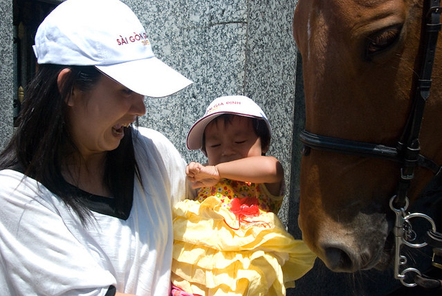 hungry horse women The latest tweets from hungry horse news  c-falls woman needs lung transplant http://www hungryhorsenewscom/local_news/201 80704/fundraiser_set.
