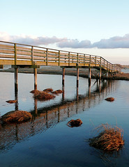 Ridgevale Beach Bridge (Magazine Aspect)