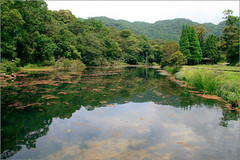 090603 福山植物園