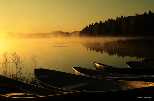 Boats in the Early morning