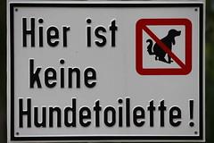 Schilder / signs