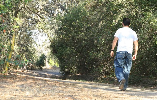Diabetes Reversal Walking, Walk Away Walk Away