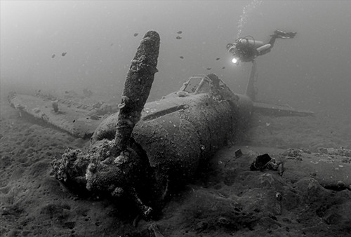 3348708946 a373cce0ec [Pics] Flickr Spotlight   Underwater Wrecks