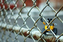 School Yard Wall-e