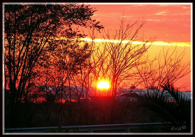 sunset-on-the-road-eva©