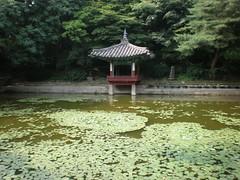 Tiny pavilion on lotus pond, Secret Garden, Changdeokgung, Seoul