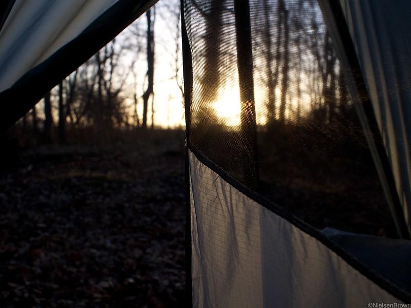 Through the mesh
