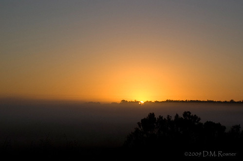 sunrise dawn florida marsh