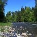 WA_8192_Lewis_River