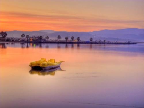 trip travel sea vacation holiday reflection sunrise turkey gulf türkiye palm deniz palmiye akyaka tatil yansıma gokova gökova turkei seyahat denizbisikleti muğla gündoğumu körfez vosplusbellesphotos seabicycle