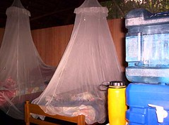 play(0.0), inflatable(0.0), mosquito net(1.0),