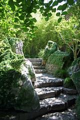 Garden Path_Background 12
