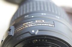 My Camera Lens