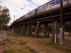 Eltham Trestle Bridge