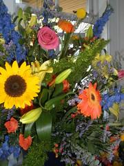 Flowers & Plants '08-14
