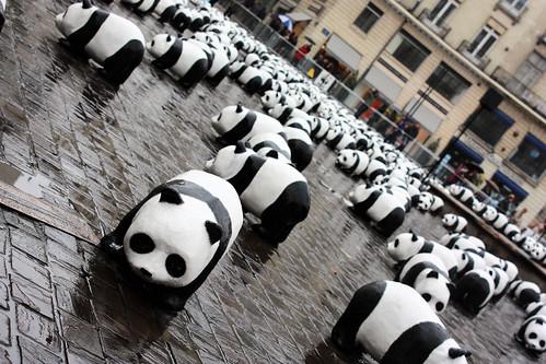 article marketing google panda