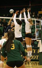 volleyball player, ball over a net games, volleyball, sports, team sport, ball game, tournament,