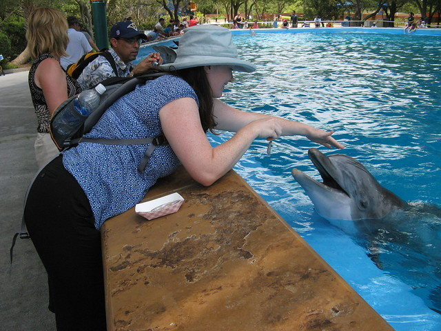 Didi with dolphin