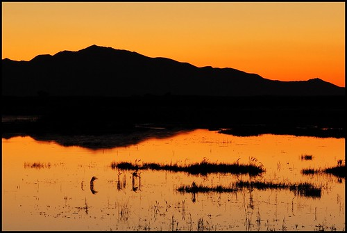 Frary Peak over Great Salt Lake Wetlands