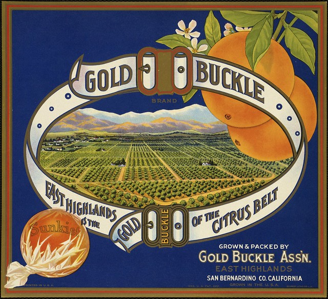 Gold Buckle Brand: East Highlands is the gold buckle of the Citrus Belt, grown & packed by Gold Buckle Ass'n., East Highlands, San Bernardino Co., California