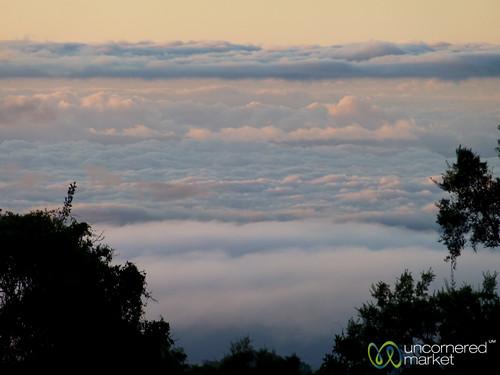 africa mountains kilimanjaro mtkilimanjaro clouds sunrise tanzania dawn mountkilimanjaro eastafrica gadv marangutrail dna2tanzania