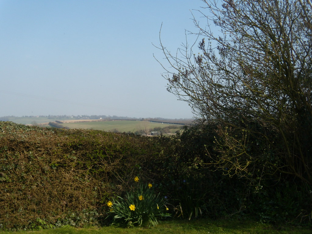 Garden, Queen's Head Rye Circular