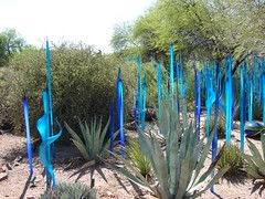 Chihuly: The Nature of Glass