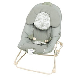 Graco Windsor Bouncy Seat Flickr Photo Sharing