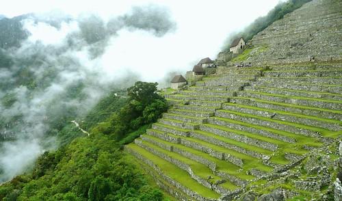 Machu Picchu, terraces