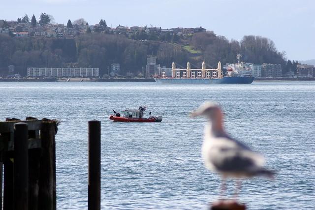 Elliot bay escorts