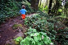 precocious trail runner    MG 2161