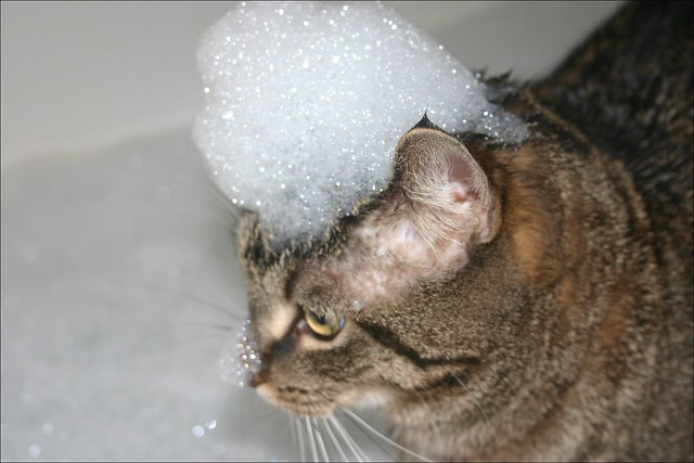 bubble bath definitionmeaning