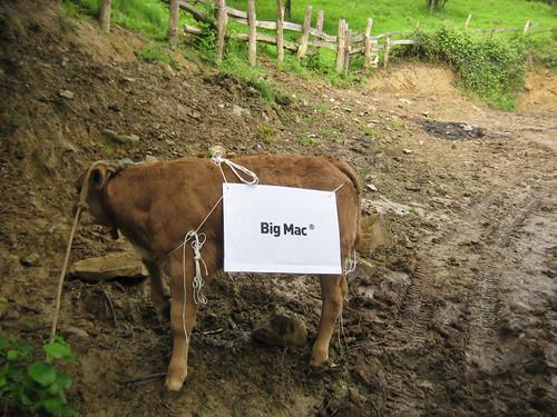 Vaca-Big Mac