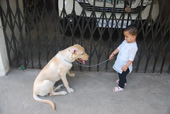 Marziya and Lucky.. by firoze shakir photographerno1