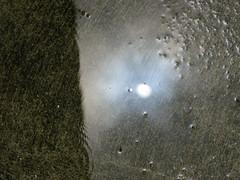 Sun and Rain 003
